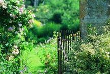 Cudowne ogrody / To co uwielbiam najbardziej