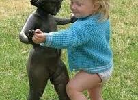 Funny Kids / The most funny photos of children funny videos with children, funny stories of the lives of young children and their parents http://very-funny-kids.blogspot.com/