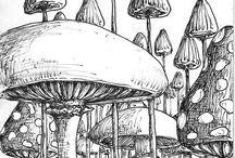 O-houby