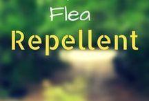 fleas/ticks