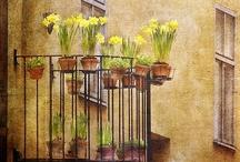 Forår på altanen  ||  Spring Balcony / Inspiration til din forårsaltan Plenty of inspiration for you spring balcony