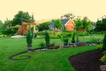 Garden ideas / by Diane Gomes