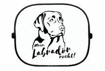 Labrador Kollektion