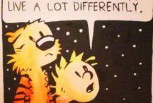 Calvin and Hobbes !!