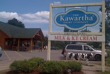 Bobcaygeon and The Kawarthas / Out and about in our neck of the woods!
