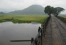 Nature - Assam