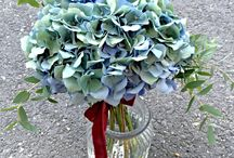 Wedding ideas / Everything about wow weddings