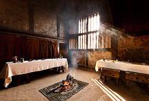 Medieval interiors