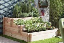 un jardin en ville
