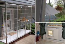 Kissojen ulkoiluhäkit - catios / Erilaisia ratkaisuja kissojen ulkoilutiloiksi :)