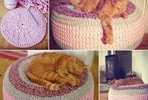 Kočička - různé