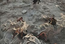 Paleontológia