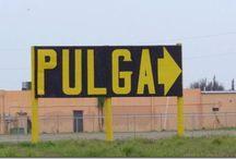La Pulga