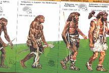 Παλαιολιθική