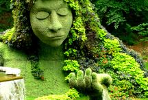 Fairy tale nature