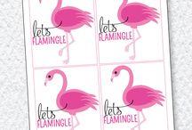 Flamingo ideas