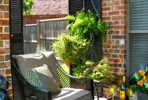 Outdoor Living  / by Juda Lewis