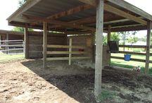 Horse yard/shelter