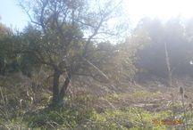 Reserva Natural Santa Catalina / Excursión a la Reserva Natural Santa Catalina ubicada en Lomas de Zamora