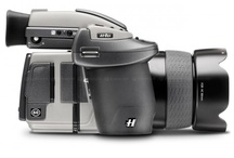 Camera & Lens Envy / by Jennifer Sechrest-Griffin