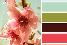 Colour palettes / #colour #palettes ~ Getting that right mix.