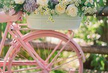 :: Garden and Garden Ideas゚・✿.。.♥ / by Pet Rock
