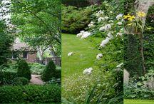 Proyectos / Jardines realizados por Bettina
