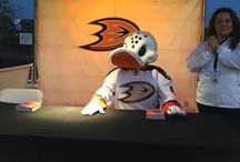 Anaheim Ducks 2014-2015 / Anaheim Ducks events and experiences that occurred in the 2014–2015 season
