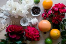 HOW-TO   The Planthunter / Images from HOW-TO stories published on The Planthunter online magazine