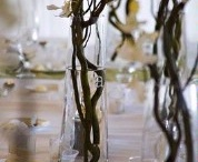 For Sarah & Nick / by Michelle Phares