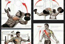 Грудныяе мышцы.