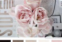 Rose colour palette