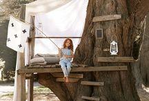 Domy na strome