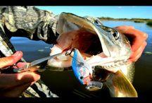 Ловля щуки и поиск язя. Рыбалка на Северной Сосьве.