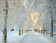 winter sceneries.