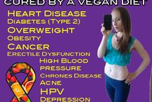 Original Lifesaver Diet - 100% Plants Nutrient Dense Healing Foods