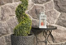 Topiaries / Spirals, pom-poms, patio trees, poodles and more, topiaries provide a classy focal point in the garden or in large containers in your outdoor room. Their dense foliage makes it easy to maintain the shape with light pruning. Also perfect for privacy screens.