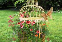 Jardinería en macetas jaula