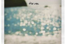 Our Home By the Sea / by Joel Ellis Brown