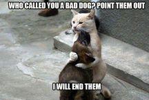 Soooo funny