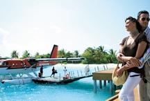 Customers Lifestyle / La vie de nos clients en voyage / by Tropicalement Votre