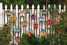 Terrasse / Cabane oiseau
