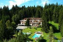 Angebote in Tirol