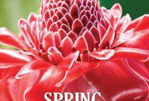 Palm Springs / #1 Travel & Destination Magazine for Palm Springs California