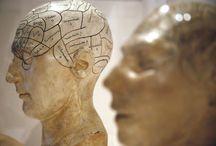 Tietoisuus - Consciousness