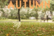 Falling for fall.