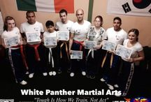Martial Arts & Fitness Training in Tralee / White Panthers Martial Arts and Fitness Club