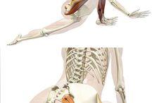 streching&yoga