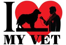 Veterinarian Medical Care Durham NC / Durham Animal Hospital is the number one choice when it comes to veterinary medical care. We genuinely care about the health of your furry family members - Durham Animal Hopsital - 4306 N Roxboro St Durham, NC 27704 - (919) 620-7387 - http://myhometownvet.com/pet-surgery-services
