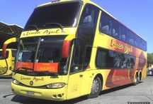 Buses Linea Azul